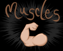 Muscles!